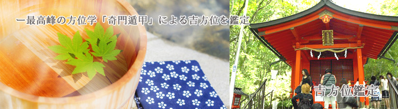 top_kippoi