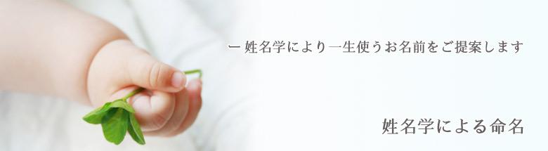 top_seimei