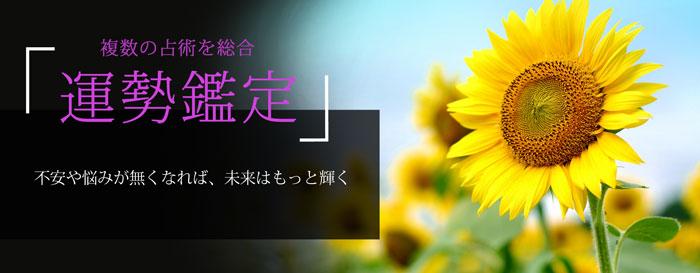 人気メニュー運勢鑑定