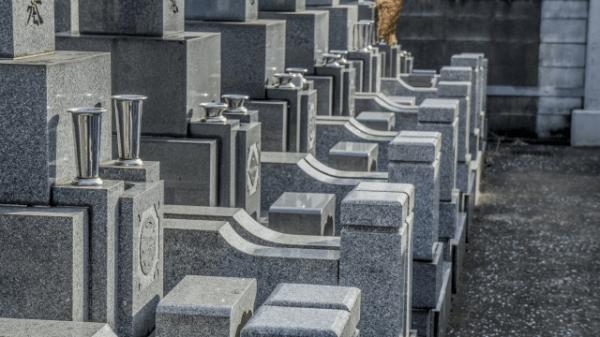 2020年2021年の五墓日