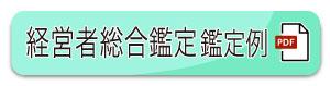 経営者総合鑑定鑑定例